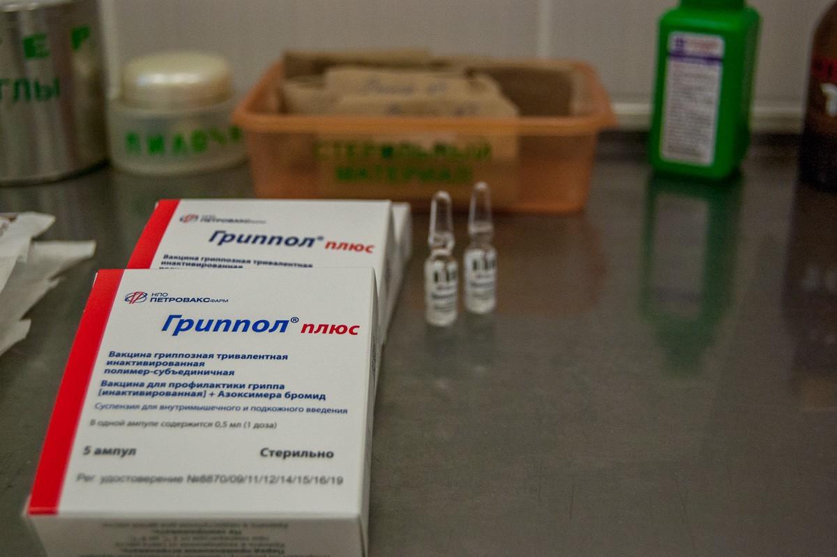В Пинске начата иммунизация: а вы прививаетесь от гриппа?