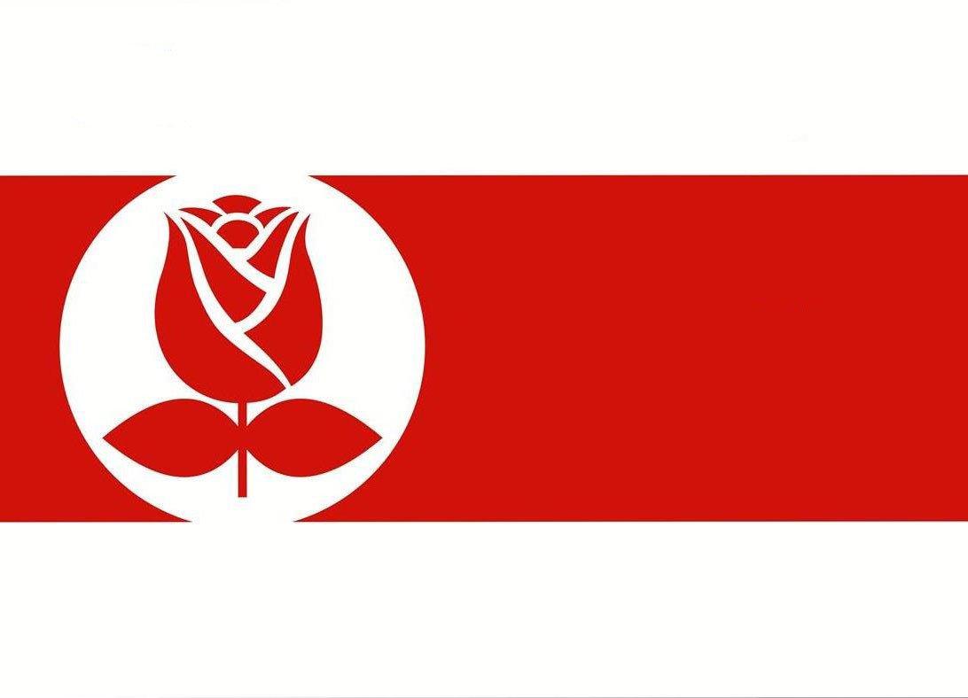 Кочанова: Бело-красно-белые флаги, конечно, попадут