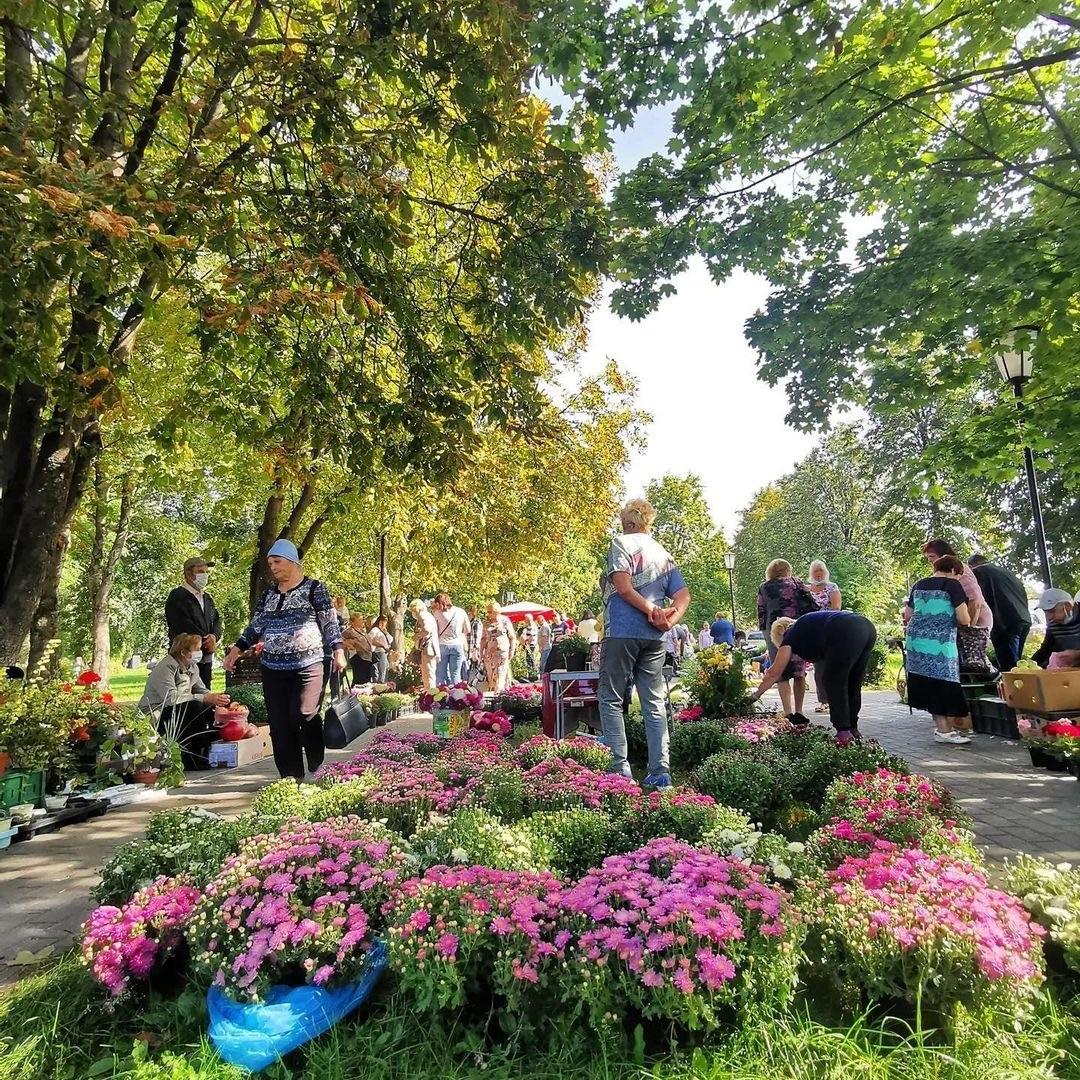 «Янтарный виноград» презентовали в Пинске (фото)